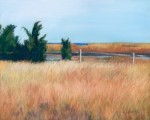 "Second Place: Martha Marson. ""Field of Gold"" Pastel."